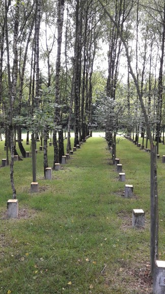 Peace woods